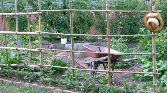 Garden and Fertility