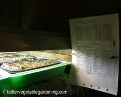 Photo of indoor seed planting guide