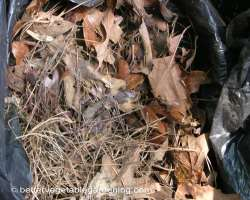 Photo of how to compost browns