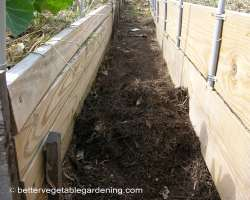 Photo of pine-straw-mulch-path-decomposed1