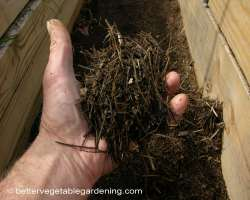 Photo of pine-straw-mulch-path-decomposed2