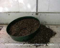Photo of starting-seeds-sieve002