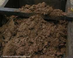 Photo of sphagnum peat
