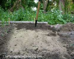 Photo of broadcasting fertilizer ready for transplanting seedlings