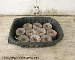 Photo of peat-pellets-any-tray