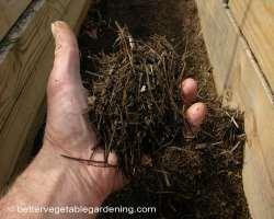 Photo of pine-straw-mulch-path-decomposed2