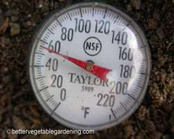 Photo of temperature for planting potatoes