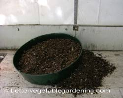 Photo of starting-seeds-sieve002